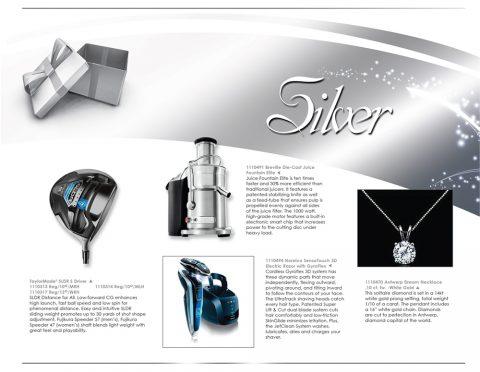 L11_Silver_P1