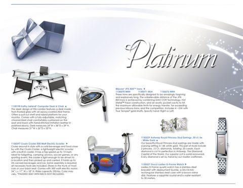L13_Platinum_P1