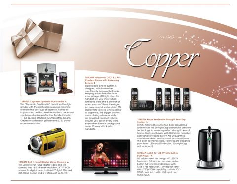 L9_Copper_P1